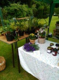 Plenty of home-grown plants,