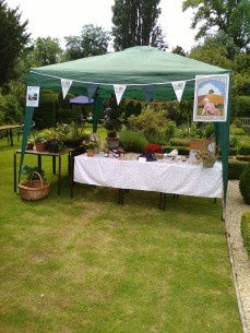 Cakes, jams, chutneys, plants & more