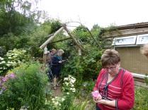 garden visit 3 10.08.16