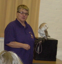Chrissies Owls