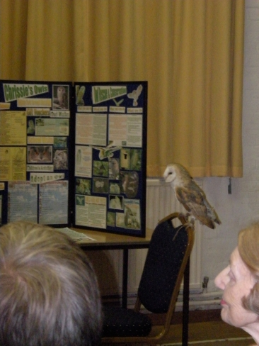 chrissies-owls-wi-meeting-8-11-16-003