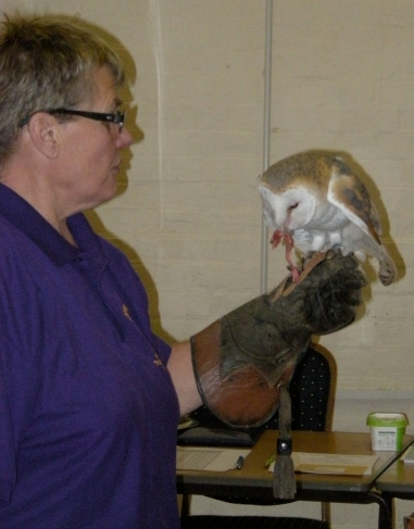 chrissies-owls-wi-meeting-8-11-16-004