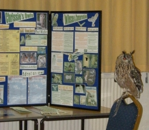 chrissies-owls-wi-meeting-8-11-16-007