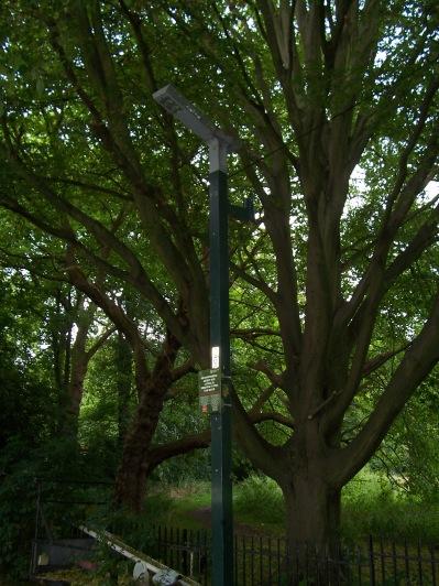 Bat-friendly lamp-post