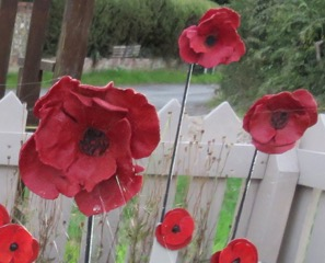 poppies in square